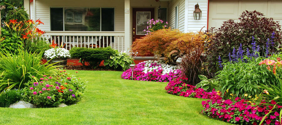 Garden Tips: How to Maximise the Profitability of the Home